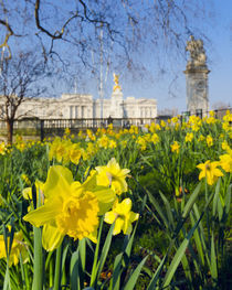 England, London, Buckingham Palace in Spring