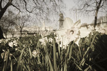 England, London, Buckingham Palace in Spring