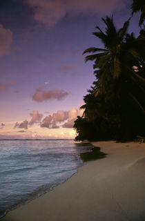 Tropical Beach at Sunset von Wolfgang Kaehler