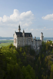Neuschwanstein by Andrew Michael