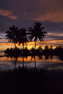 Tropical Island at Sunset by Wolfgang Kaehler