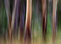 Colours of Australia von Kitsmumma Fine Art Photography