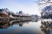 Frosty river severn by Andrew Michael
