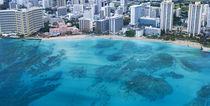 Blue Waikiki von Sean Davey