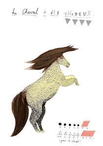 un cheval, des cheveux