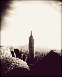 Empire State Building by Tracey  Tomtene
