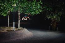 Piotrek Combrzynski - Tree Stall
