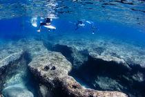 Pipe-reef