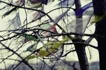 Le vent nous portera von Raul Lieberwirth