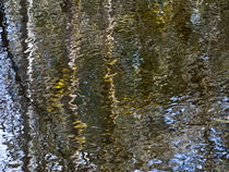 pond ripples reflection von Ed Book