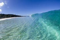 Pupukea swell by Sean Davey