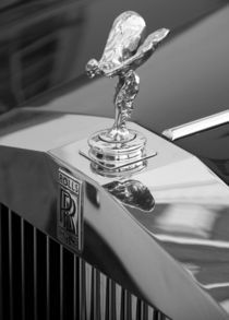 Spirit of Ecstasy by Julian Raphael Prante