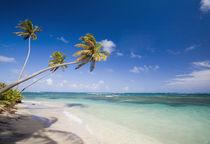 Long Haul Bay, Nevis von Danita Delimont