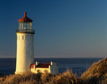 WA, Cape Disappointment State Park, North Head Lighthouse by Danita Delimont