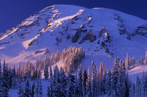 North America, USA, Washington, Mt. Rainier NP Mt. Rainier by Danita Delimont