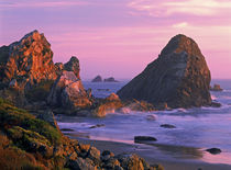 USA, Oregon, Harris State Beach, Brookings. Sea stacks at sunset. Credit as von Danita Delimont