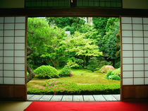 Asia, Japan, Kyoto. Zen Garden von Danita Delimont