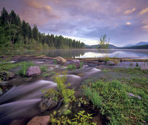 Lower Stillwater Lake in the Flathead National Forest of Montana by Danita Delimont