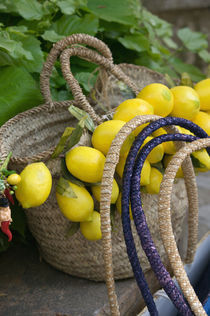 Europe, Italy, Campania (Amalfi Coast) POSITANO: Handbag with Lemons by Danita Delimont