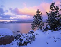 USA, California. A winter day at Lake Tahoe. Credit as von Danita Delimont