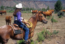 A cowgirl out working the herd on a cattle drive through central Oregon.