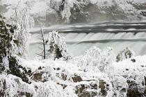 Kootenai Falls near Troy Montana in winter by Danita Delimont