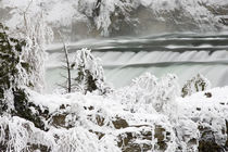 Kootenai Falls near Troy Montana in winter von Danita Delimont