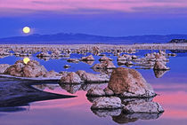 USA, California. Full moon rises at sunset on Mono Lake. Credit as von Danita Delimont