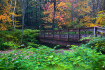 USA, Vermont, Graton, Saxton's River Bridge by Danita Delimont
