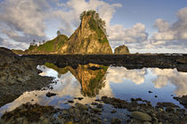 USA, Washington, Olympic National Park by Danita Delimont