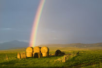 Briiliant rainbow over hay bales along the Judith mountain Range,  near Montana von Danita Delimont