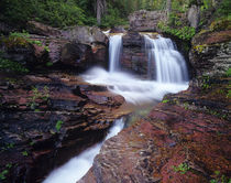 Red rock cascades along Virginia Creek in Glacier National Park in Montana von Danita Delimont
