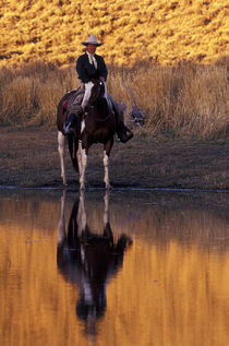 North America, USA, Oregon, Seneca. Cowboy and horse near creek (MR) von Danita Delimont