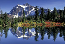 USA, WA, Heather Meadows RA. Mount Shuksan at Picture Lake. von Danita Delimont