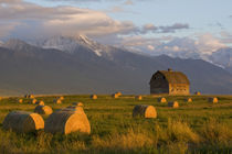 Old barn framed by hay bales and dramatic Mission Mountain Range in Montana von Danita Delimont