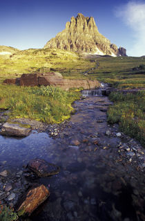 NA, USA, Montana, Glacier NP Stream below Mt. Reynolds, Logan Pass area by Danita Delimont