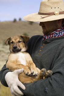 USA, Oregon, Seneca, Ponderosa Ranch. Cowboy holds his puppy. Credit as by Danita Delimont