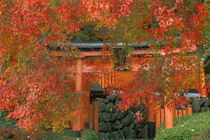 Yoshimine Temple, Nagaoka, Kyoto, Japan von Danita Delimont