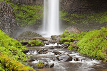 OR, Columbia River Gorge, Latourell Falls and Latourell Creek by Danita Delimont