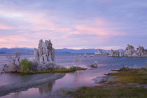 CA, Mono Lake Tufa State Reserve, South Tufa Area, Tufas and Mono Lake at sunset by Danita Delimont
