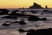 N.A, USA, Washington, Olympic Nat'l Park Seastacks at sunset, Rialto Beach von Danita Delimont