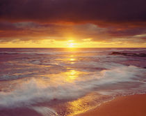 USA, California, San Diego.  Sunset over the Pacific Ocean at Sunset Cliffs by Danita Delimont