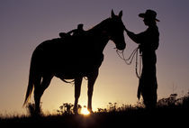 North America, USA, Oregon, Seneca. Cowboy and horse silhouette (MR) von Danita Delimont