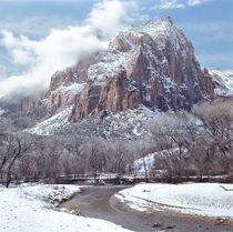 USA, Utah, Zion NP von Danita Delimont