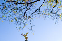 Tree whit angel by Ricardo Anderson