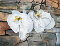 orchids flower painting by Derek McCrea