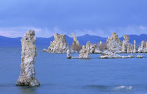 USA, California, Mono Lake von Danita Delimont