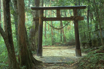 Mountain Shrine, Yakushima, Kagoshima, Japan by Danita Delimont