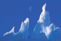 Antarctica, Australian Antarctic Territory. Iceberg von Danita Delimont