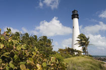 USA-Florida-Miami Area (Key Biscayne): Cape Florida Lighthouse by Danita Delimont